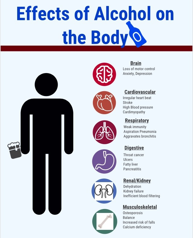 Effects of Alcohol Use on Your Body